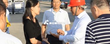 灌云县委副书记、代县长曹明丽莅临科洛吉公司检查指导工作